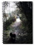 On A Walk In The Park Spiral Notebook