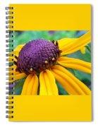 On A Warm Summer Day Spiral Notebook