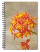 On Fire Spiral Notebook