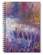 On Frozen Pond Spiral Notebook
