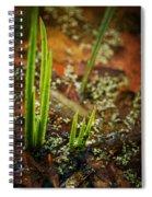 On Golden Pond Spiral Notebook
