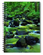 On Golden Waters  Spiral Notebook