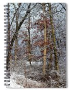 On Such A Winter's Day Spiral Notebook