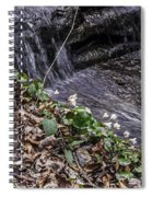 On The Banks Of The Rapids Spiral Notebook