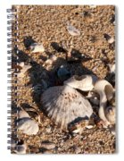 On The Beach 03 Spiral Notebook