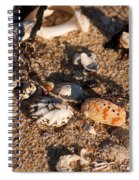 On The Beach 04 Spiral Notebook