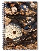 On The Beach 05 Spiral Notebook