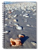 On The Beach Apple Murex Spiral Notebook