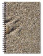 Shell On The Beach Spiral Notebook