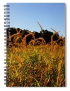 On The Edge Spiral Notebook