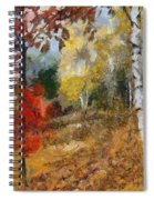 On The Edge Of The Forest Spiral Notebook