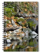 On The Edge Of The Lake Spiral Notebook