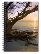 On The Edge Of The Surf Spiral Notebook