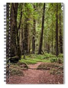 On The Enchanted Path Spiral Notebook