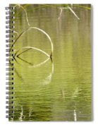 On The Pond Spiral Notebook