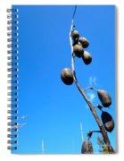 On The Prairie #11 Spiral Notebook