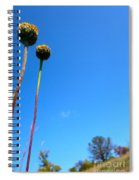 On The Prairie #9 Spiral Notebook