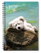 On The Rocks - Teddy Bear Art By William Patrick And Sharon Cummings Spiral Notebook