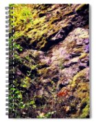 On The Side Of The Rock Spiral Notebook