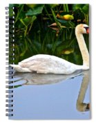 On The Swanny River Spiral Notebook