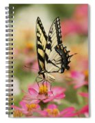 On The Top - Swallowtail Butterfly Spiral Notebook