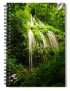 On The Wahkeena Trail Spiral Notebook
