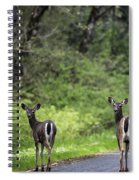 On The Way Home Spiral Notebook
