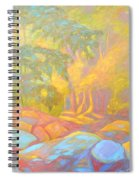 On The Way To The Cascades Spiral Notebook