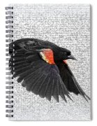 On The Wing - Red-winged Blackbird Spiral Notebook