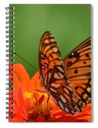 On The Wings Of A Butterfly Spiral Notebook
