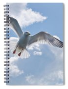 On The Wings Of A Gull Spiral Notebook