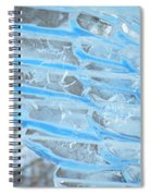 On The Wings Of A Winter Wind Spiral Notebook