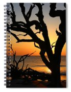 Once A Mighty Oak Spiral Notebook