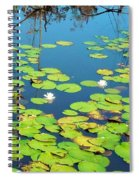 Once Upon A Lily Pad Spiral Notebook