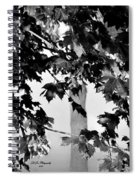 Once Upon A Time In Bw Spiral Notebook