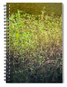 Once Upon An Egret's Home Spiral Notebook