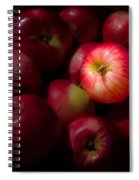 One A Day Spiral Notebook