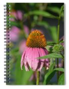 One Among The Coneflowers Spiral Notebook