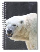 One Angry Polar Bear Spiral Notebook