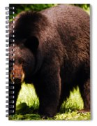 One Big Bad Momma Spiral Notebook
