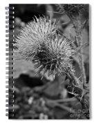 One Bw Spiral Notebook