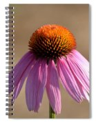 One Coneflower Spiral Notebook