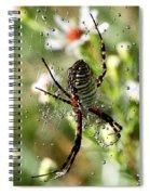 One Giant Spider Spiral Notebook