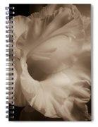One Gladiola Spiral Notebook