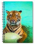 One Kool Cat Spiral Notebook
