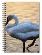 One Last Swim Spiral Notebook