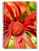One Lazy Petal Spiral Notebook