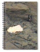 One Leaf Flowing Downstream Spiral Notebook