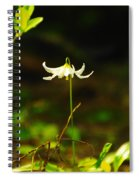 One Lily Almost Alone Spiral Notebook