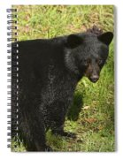 One Of The Quads Spiral Notebook